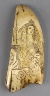 a 19th century scrimshaw decorated tooth with britannia decoration